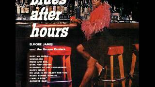 Elmore James & The Broom Dusters - Long Tall Woman