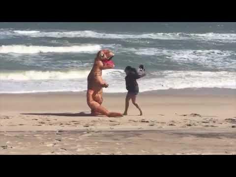 T-rex Beach Carnage