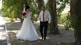 Савр и Байрта (свадьба в Элисте)