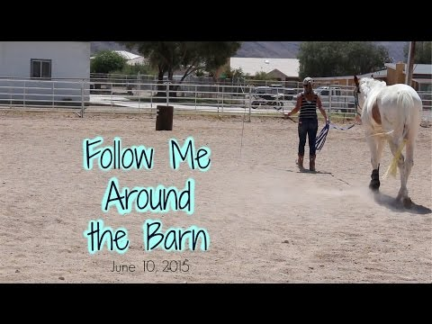 Follow Me Around the Barn | 6.10.15