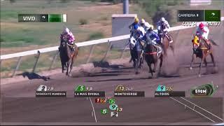 Vidéo de la course PMU PREMIO DECANTER