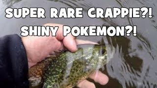 Did I Catch a RARE FISH?! Exploring & Fishing the Raritan River! (Clinton, NJ)