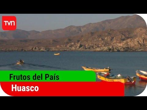 Frutos del país | T12E09: Huasco