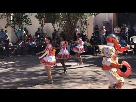 Sambos Caporales (parte 1) - Huatacondo 2018из YouTube · Длительность: 36 мин14 с
