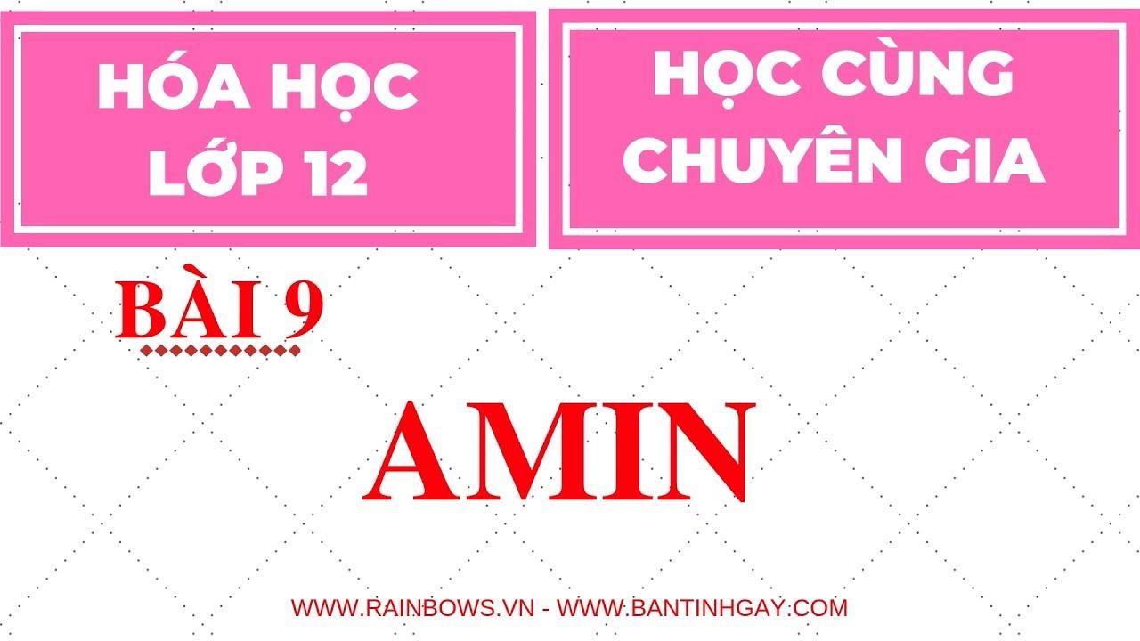 HÓA HỌC 12 || BÀI 9 || AMIN