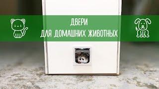 Двери для домашних животных