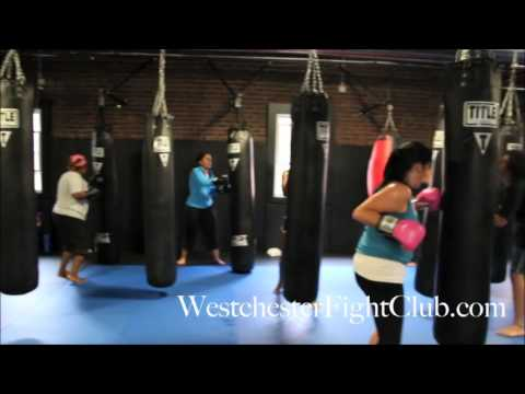 MMA Gyms in Stamford CT | 30 Days Free