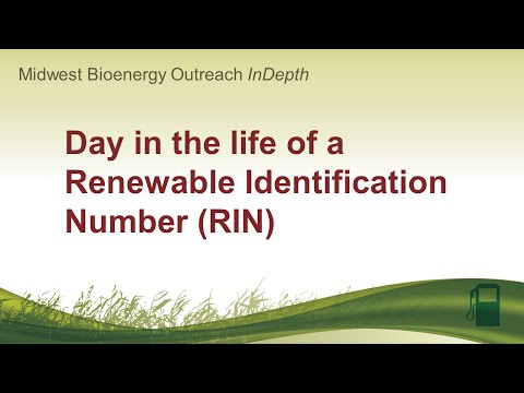 Day in the life of a Renewable Identification Number (RIN)