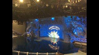 Москвариум: НОВОГОДНЕЕ ШОУ «Вокруг света за Новый Год». Косатки, белуха, воздушные гимнасты