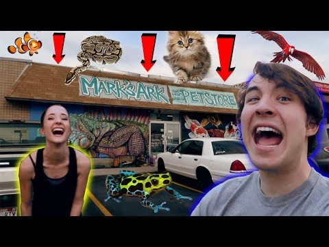 journey to the WORLD&39;S MOST EPIC PET STORE?! (we got EVEN MORE!!)