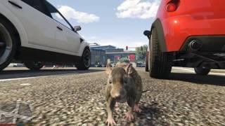 GTA 5 Mods #21 - Chuột con đi khám phá thế giới & Bò con biết phun lửa