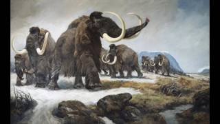 The Big Questions Extinction Reviving woolly mamm...