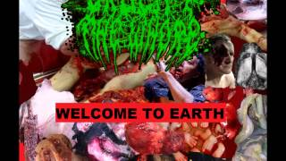 Crucify The Whore - Welcome To Earth (2014 FULL ALBUM)