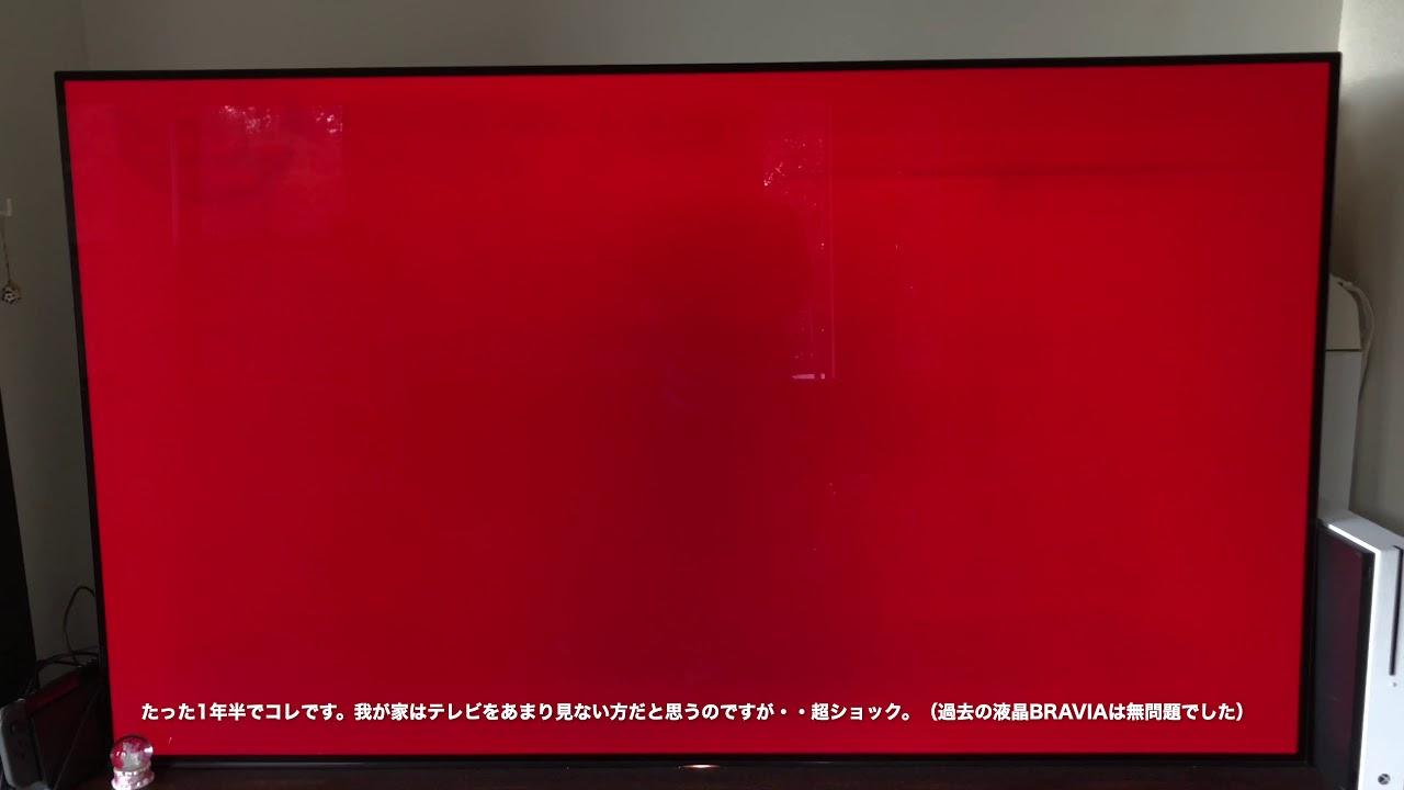 【最悪】有機elテレビ1年半で焼き付き【bravia Oled A1】 Youtube