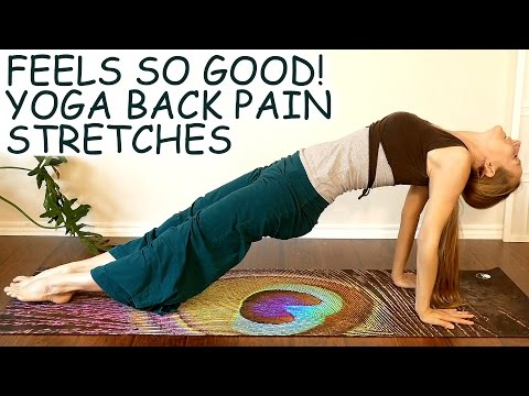 Beginner Yoga for Back Pain, Low & Upper Back Stretches, Headaches, Neck & Shoulder Pain at Home