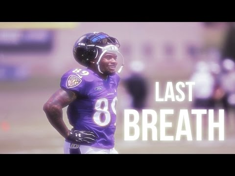 Steve Smith Sr MIX - Last Breath [HD]
