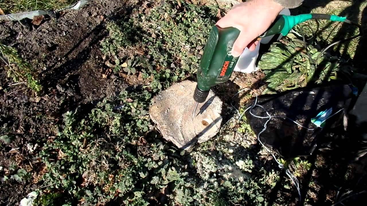 Химическое уничтожение сорняков сдел пункт приема макулатуры в новочеркасске