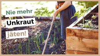 Gemüsegarten Ohne Unkraut - So Bleibt Dein Garten Unkrautfrei!
