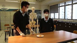 honwah的同老師玩遊戲-18禁薯片 預告片相片