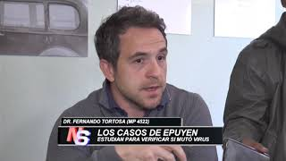CASOS DE HANTAVIRUS EN EPUYEN