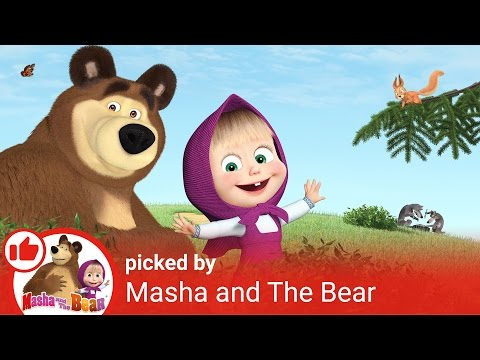 Masha and The Bear - Masha recommends! Masha's favorite videos about curious kids!