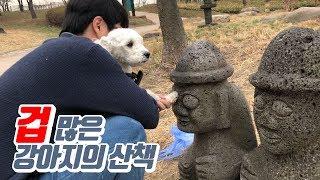 겁 많은 강아지의 산책(피카츄가 된 강아지)-마로와규니-