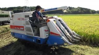 Combine Harvester Full di Jepang. Iseki