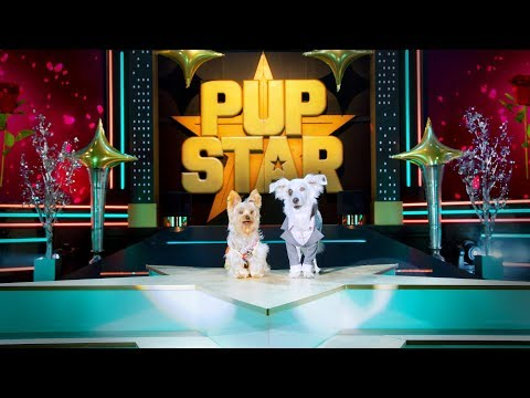 Pup Star: World Tour Trailer