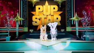 Pup Star: World Tour Trailer