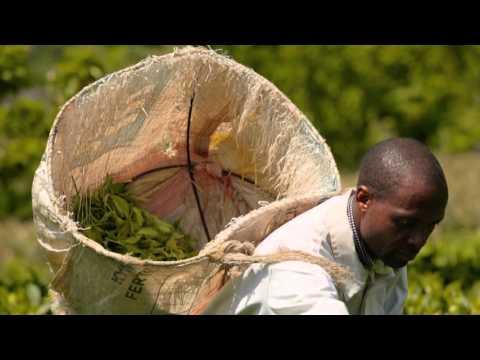 Fairtrade Matters – Kurzfilm