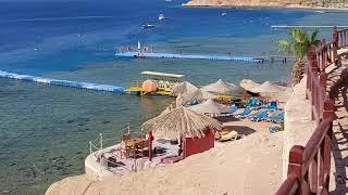 Египет отель хилтон