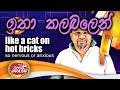 Magic words & phrases - like a cat on hot bricks
