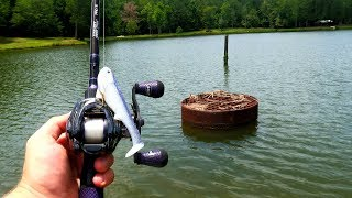 Fishing a New Lake & Catching DUMB Mean Fish (Sharp Teeth!)
