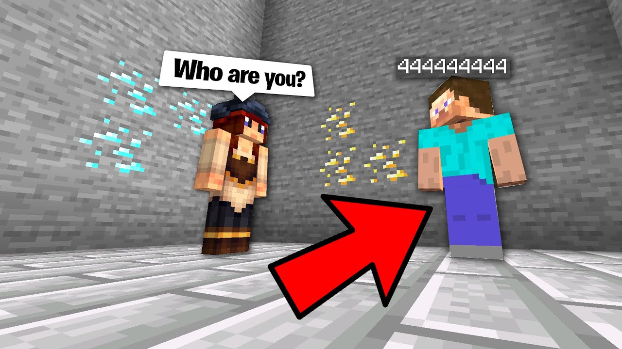 Download Trolling minecraft players by spawning NPC's in their houses..