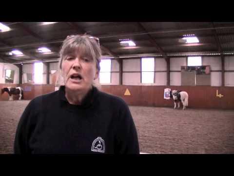 Clwyd Special Riding Centre.m4v