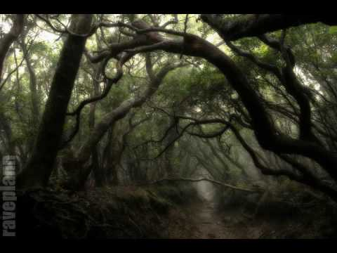 Dark forest Deidriim Raging Spirits Of Mother Gaia 3 1 2014