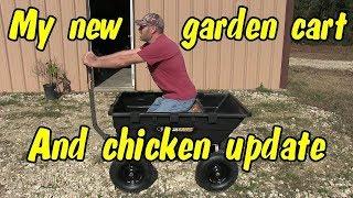 Chicken update and my new garden Gorilla cart