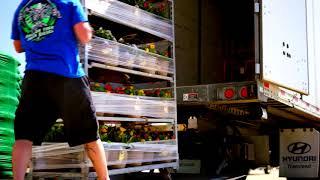 """Trucking """" Flower Power 2.0 """" Vlog"""