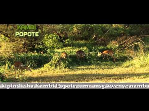 Kambi Popote 23/May ( Lake manyara )