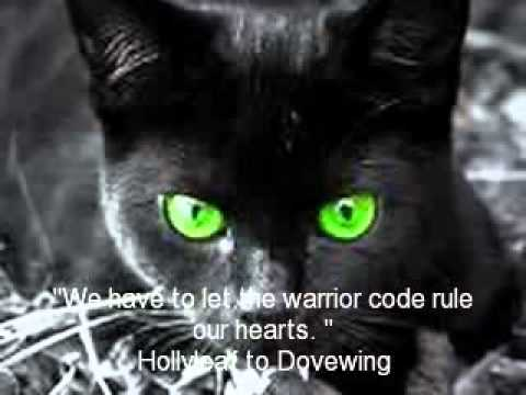Warrior Cat Quotes Youtube