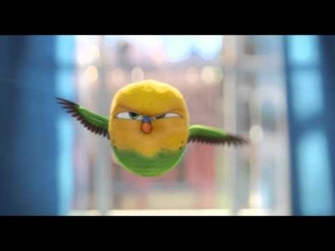 The Secret Life Of Pets | Official Trailer | Thai Sub