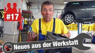 Xenon-Scheinwerfer-Wucher & ein verstopfter Aktivkohlefilter| Neues aus der Werkstatt #17