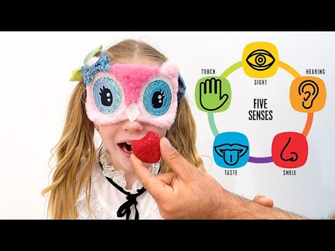 Download Dad teaches Nastya 5 human senses