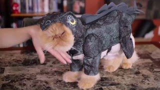 My Cats Review Costumes