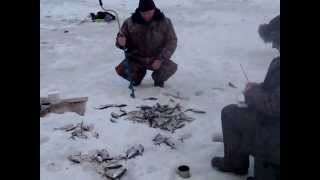 Рыбалка на Днепре в Смоленске 1.02.2013г.(, 2013-02-05T14:40:25.000Z)