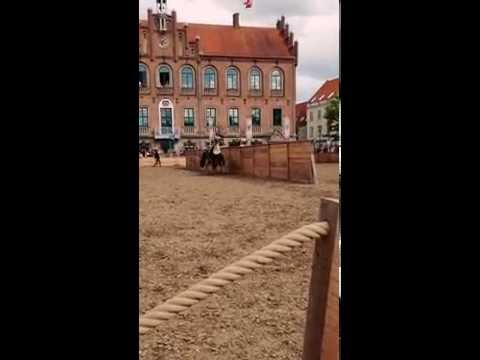 Jousting tournament in Nyborg - July 2016