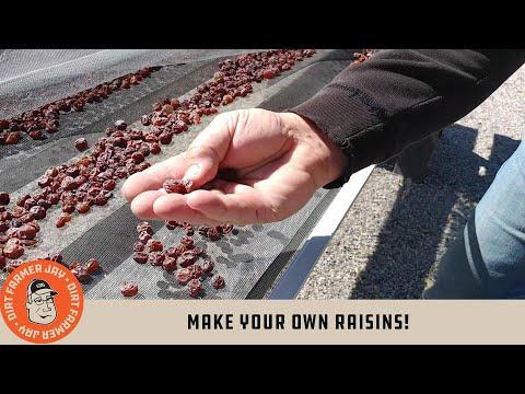 Make Your Own Raisins!