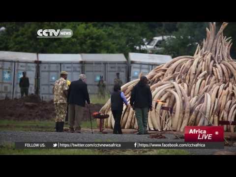 Nairobi struggling with environmental challenges