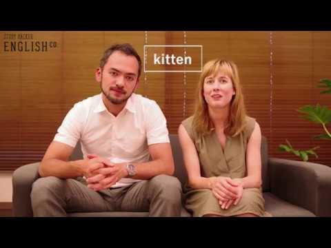 glottal stop ——ネイティブ講師が教える発音のルール