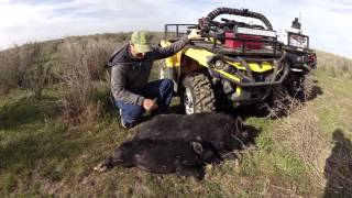 Pig Hunting Can Am Style Volume 3